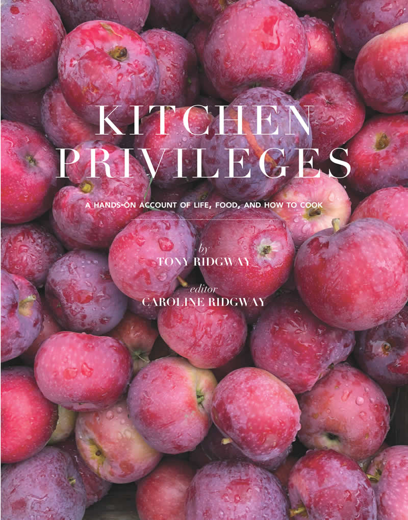Kitchen Privileges book cover